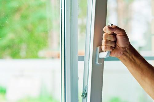 How to Get Rid Of Bathroom Flies?